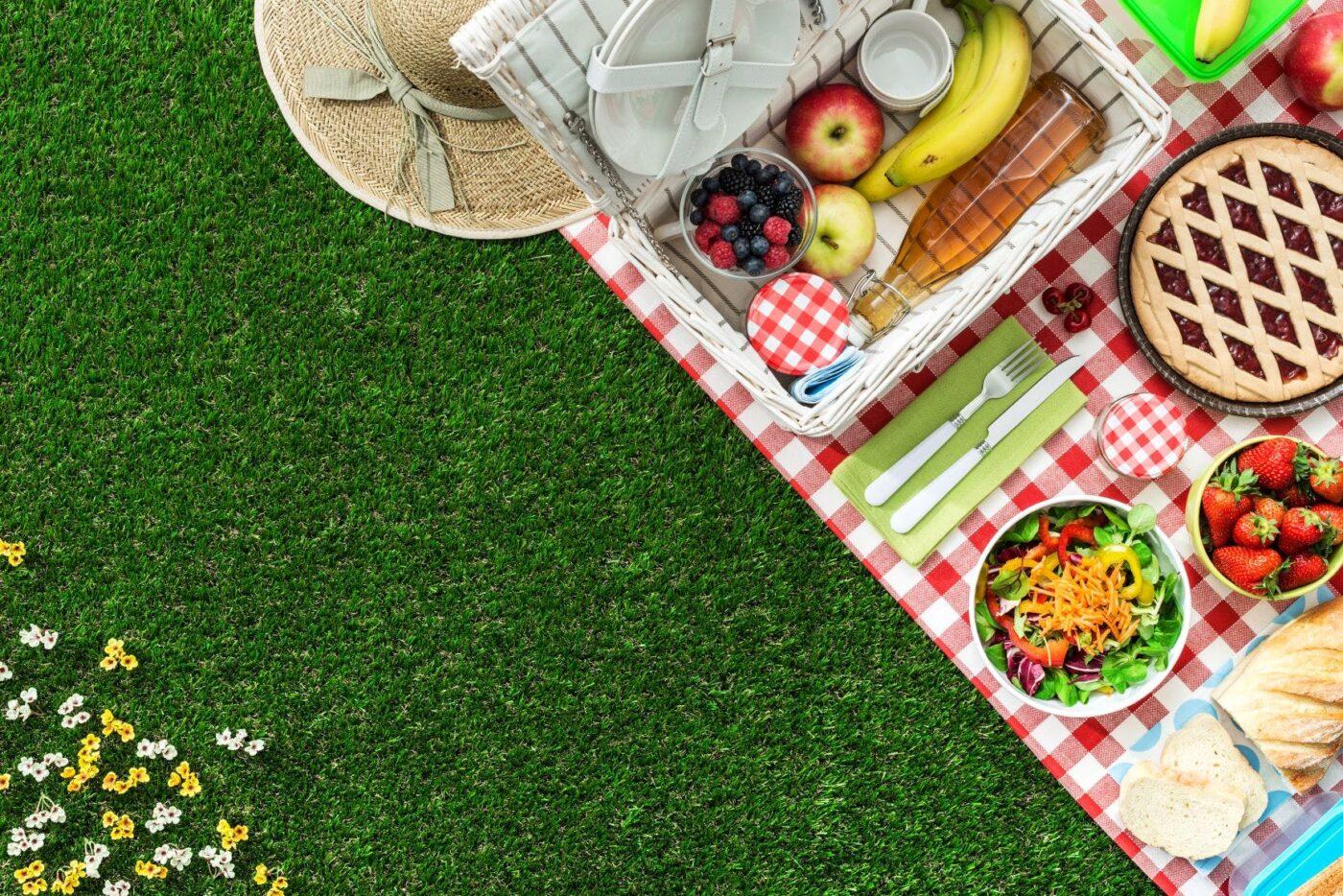 Go for a picnic!